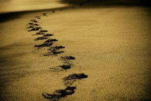 putovanja pesak